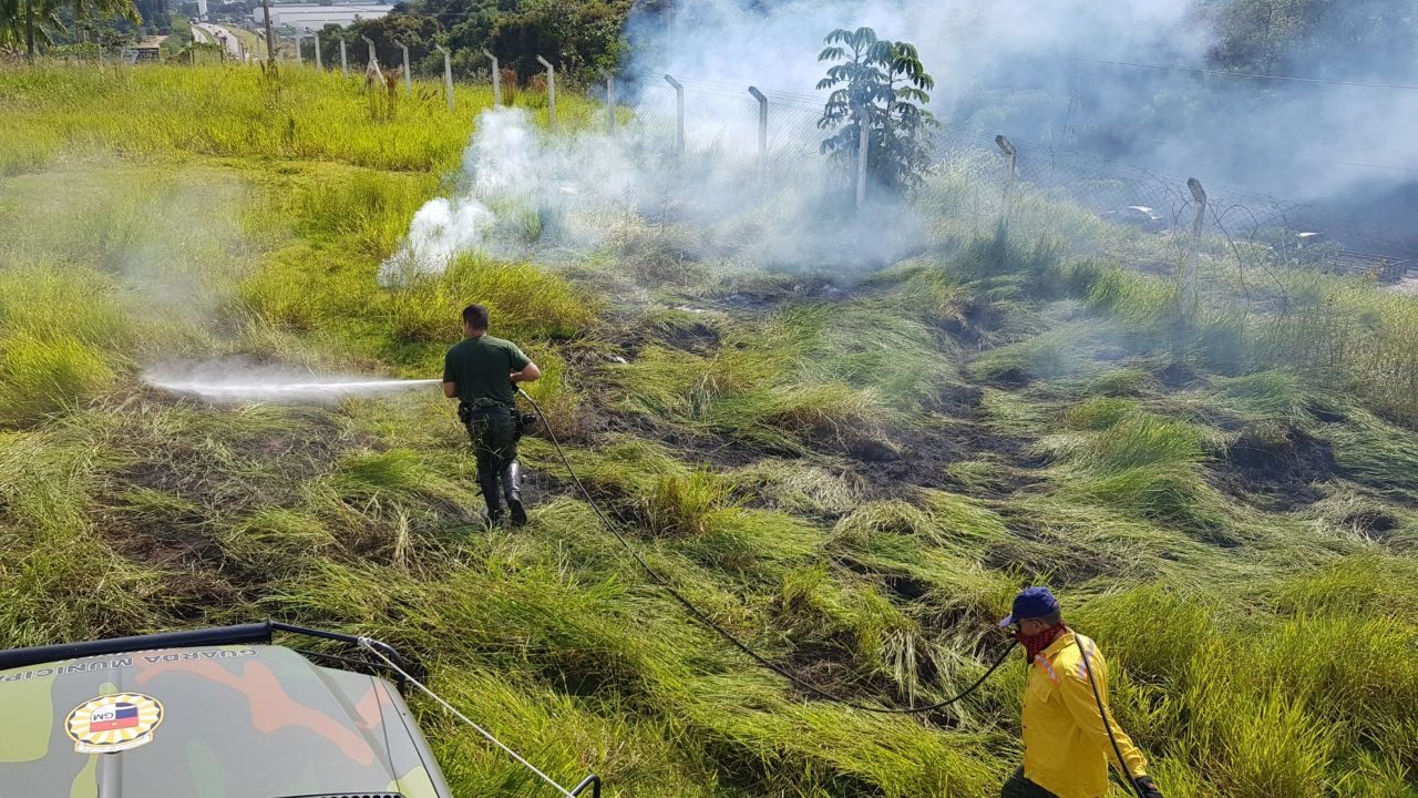 Homens da Guarda Municipal apagam incêndio em área verde