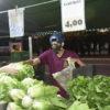 Feirante atrás de sua barraca de verduras e folhas em atendimento