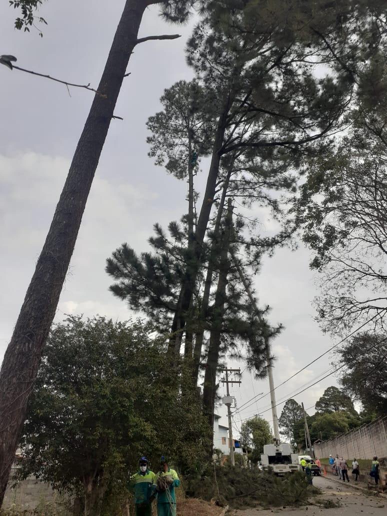 Árvores foram removidas do local pelas equipes da UGISP, após desligamento da força feito pela CPFL