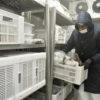 Homem com roupa de proteção contra o frio manuseia caixas dente de câmara frigorífica