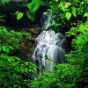 Serra do Japi é o maior patrimônio ambiental da Região de Jundiaí