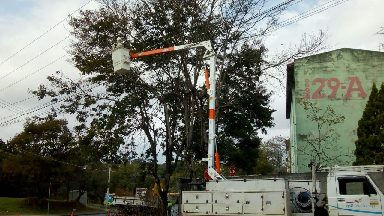 CPFL é parceira da UGISP na remoção de árvores com problemas, assim como a Defesa Civil e a UGMT