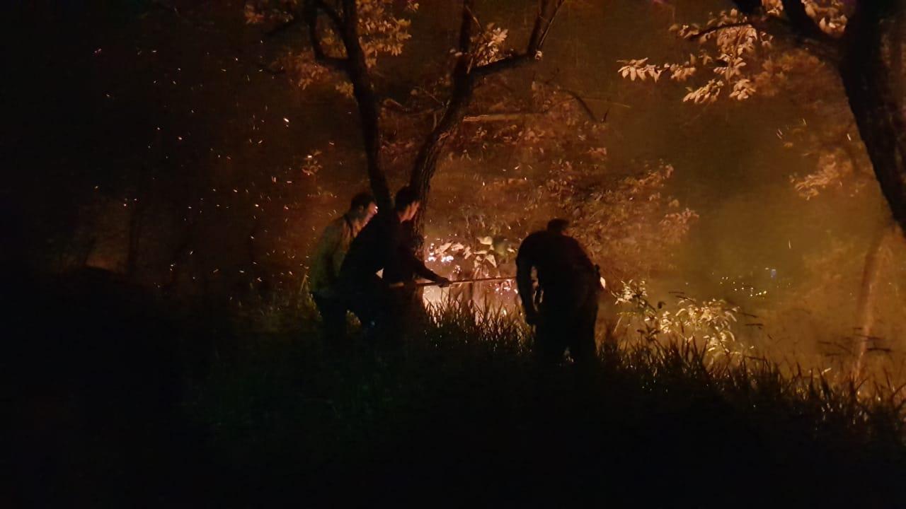 Divisão Florestal da GM e Corpo de Bombeiros combatem as chamas na serra também à noite