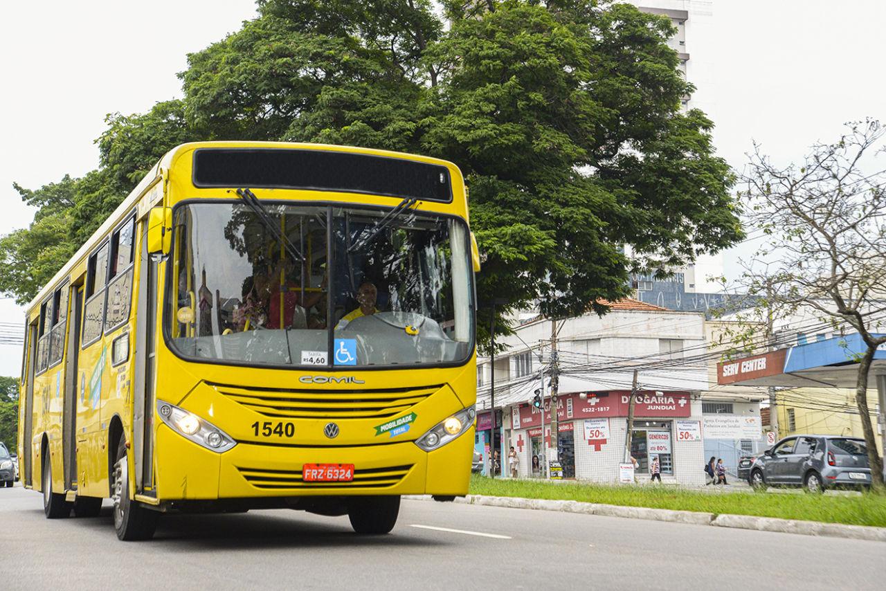 Ônibus transitando por avenida asfaltada, com canteiro central com vegetação e árvore