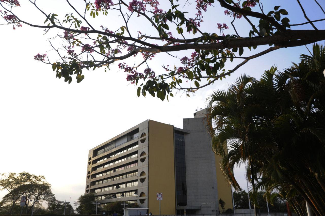 Prédio com oito andares, cercado de árvores