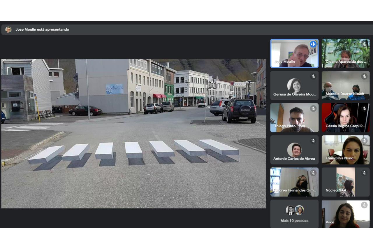 Imagem mostra tela com reunião virtual