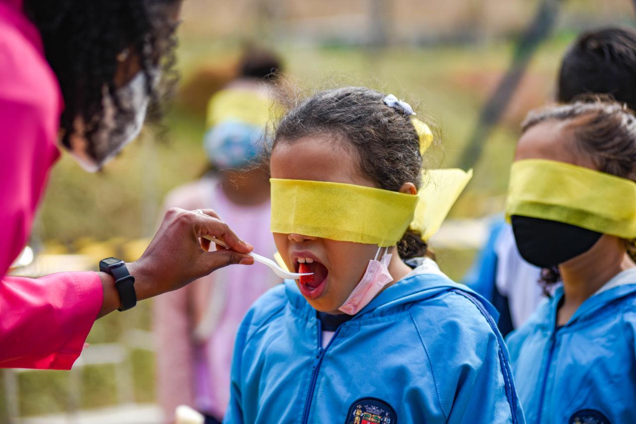 menina de uniforme azul, com pano amarelo vendando os olhos. Mulher com roupa com manga rosa dá morango para a menina experimentar
