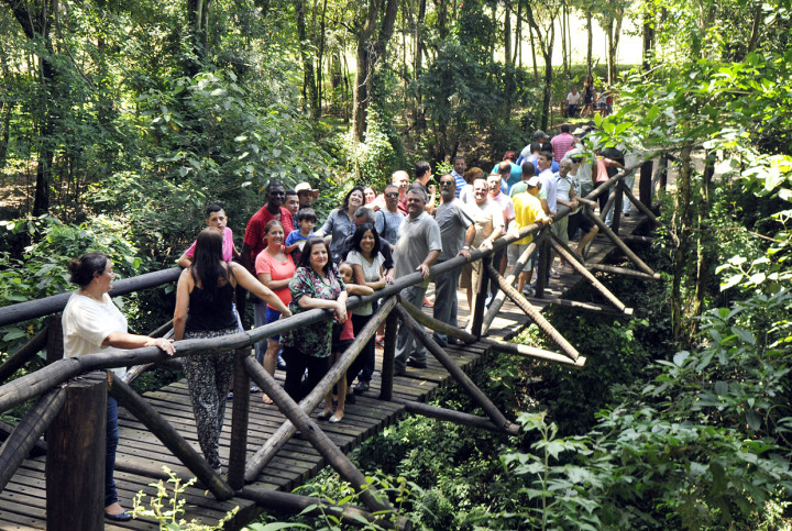 Parque conta ainda com ponte de madeira suspensa